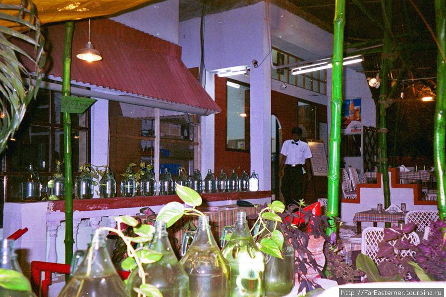 Растения в ресторане Рандеву