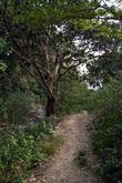 Дорога к водопаду Сан Рамон