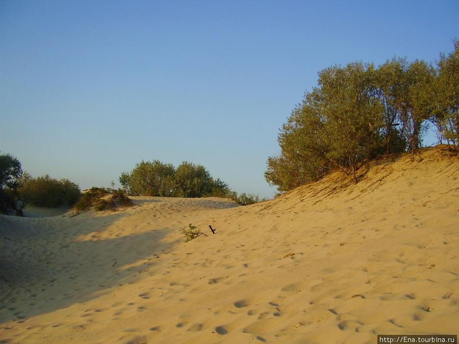 Милые дюны