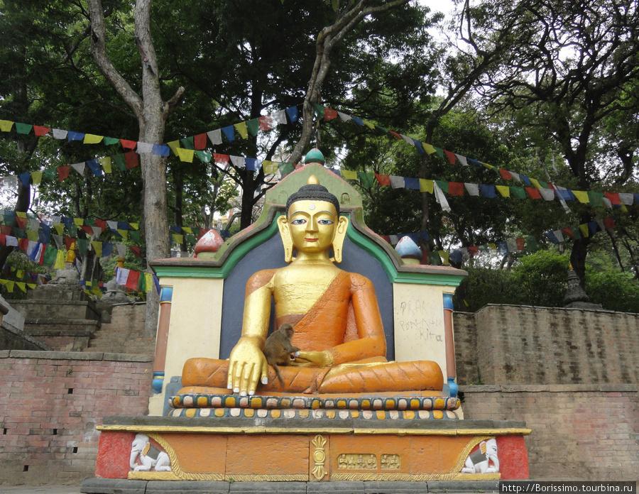 Храм Сваямбунатх: святая обезьяна на коленях Будды.