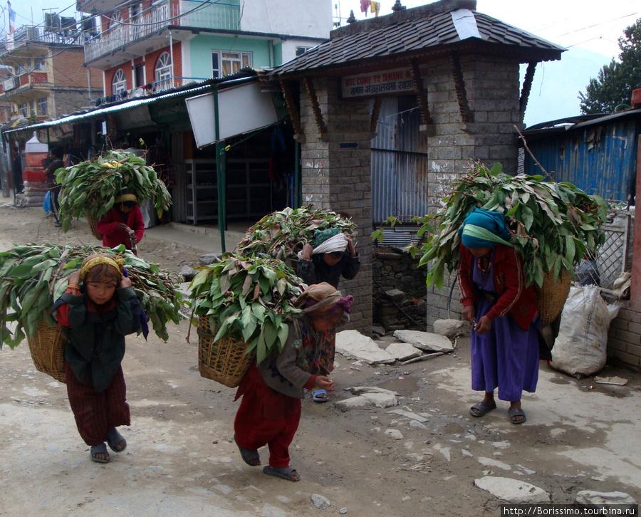 Жители городка Дунче. В нём начинается наш трекинг в Гималаях.