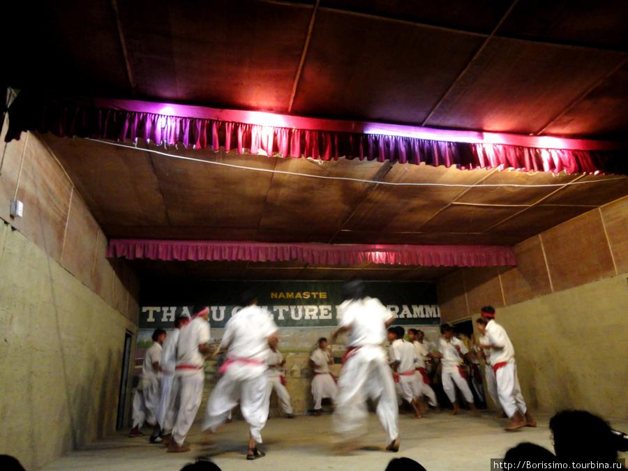 Непальское отделение группы Тодос :-).  Шоу было потрясающим!