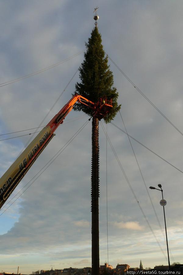 На площади уже начали собирать елку.