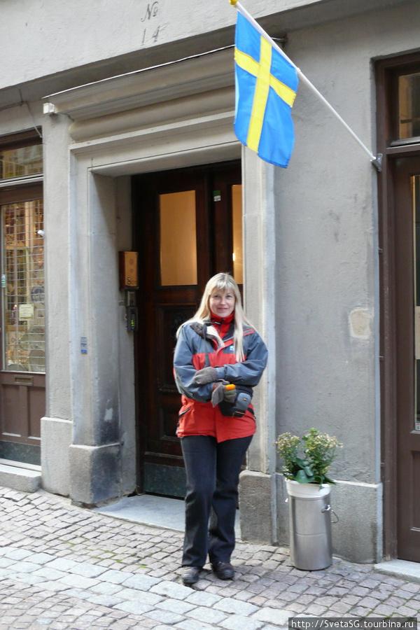 Под Шведским флагом