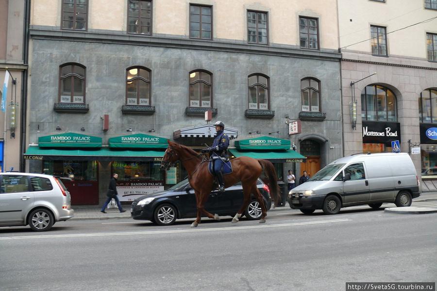 Полиция на лошадках