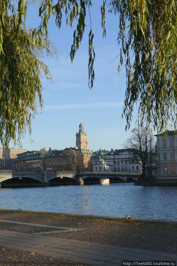 Ноябрь в Стокгольме.