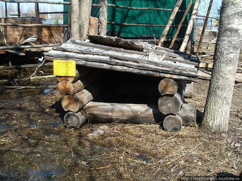 Домик для сибирской лайки — этого пастуха оленьих стад.