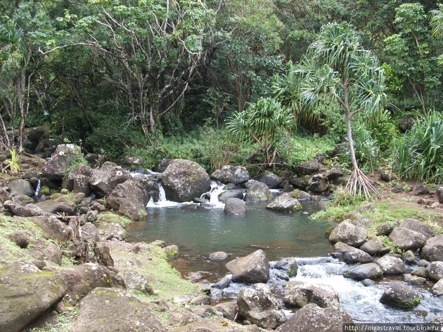 Горная речка орашает сельскохозяйственные терассы