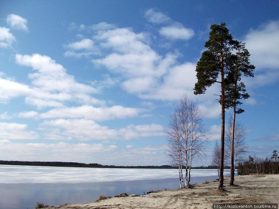 На берегу озера.