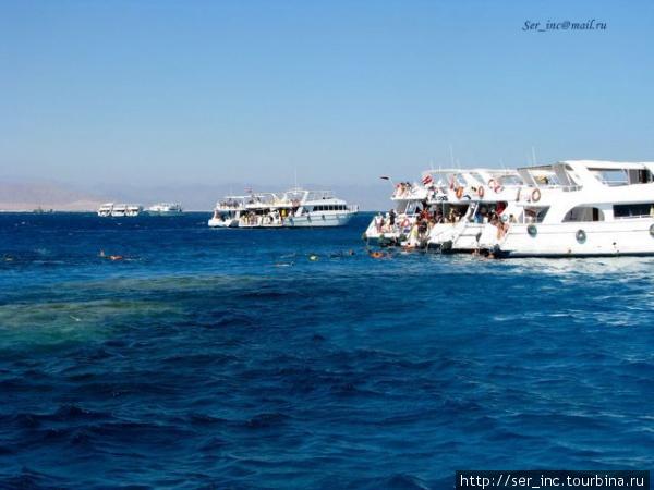 Яхты у коралловых рифов вблизи острова Тиран