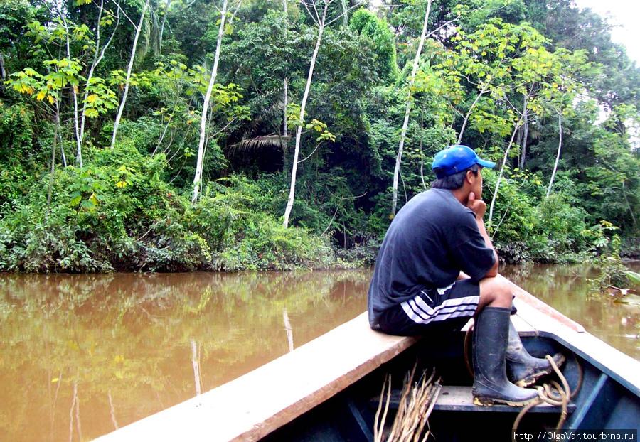 Джунгли сплощь покрыты водой, потому без лодки там не пройти