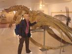 В музее парка Полуостров Вальдес