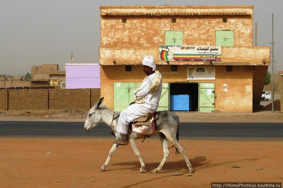 Судан, джигит