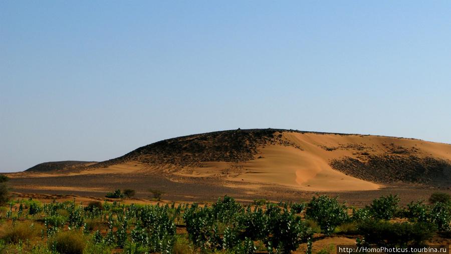 Судан, пустыня