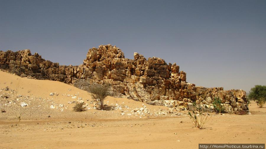 Судан, пустыня Баюда