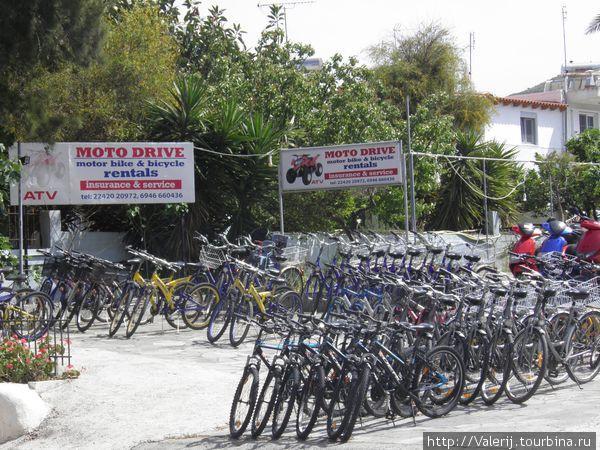 Все для туристов, и велосипеды — тоже