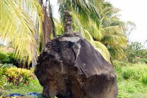 Вулканическая глыба на территории биостанции — прилетела из жерла вулкана