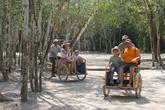 По территории Кобы развозят велорикши