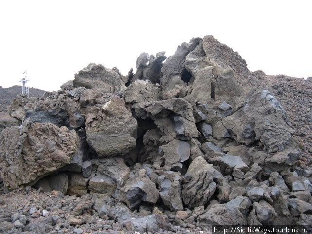 Каменный цветок — застывшая лава на высоте 2600 м.