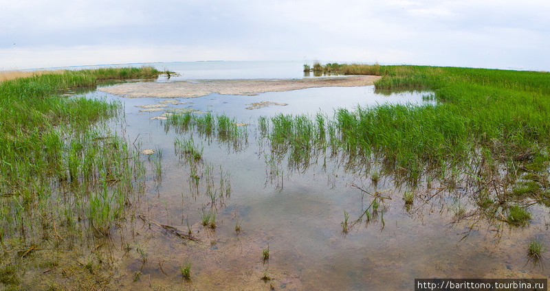 На берегу озера Сартлан.