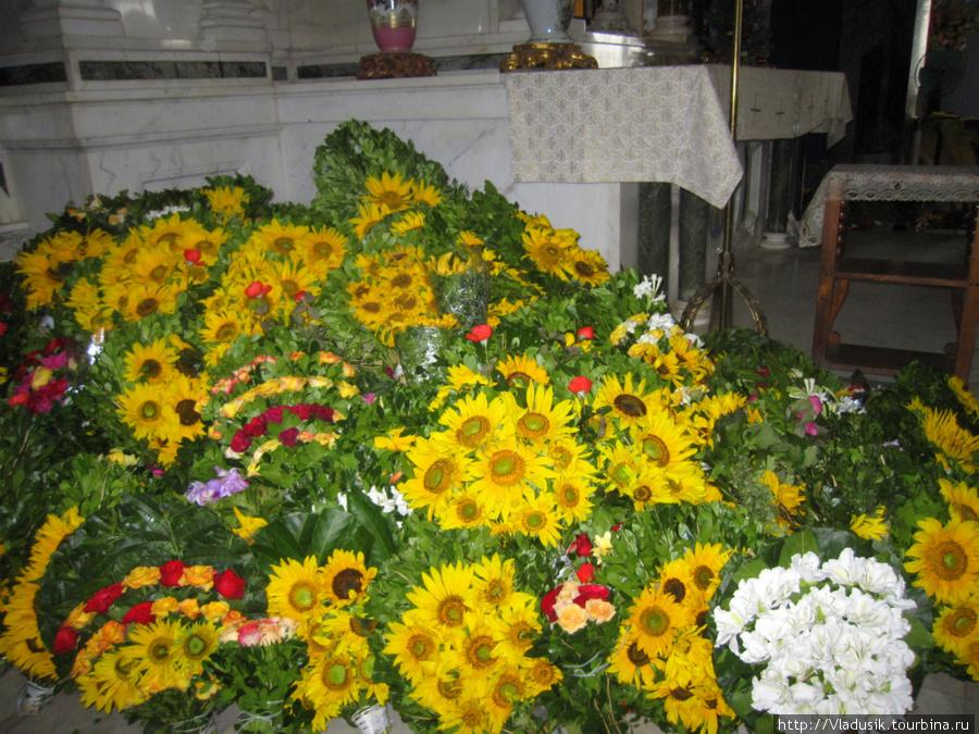 Сантерии оставляют цветы у статуи