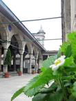 Двор мечети Рюсет-Паши