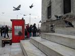 Киоск с голубиным кормом на площади Эмененю