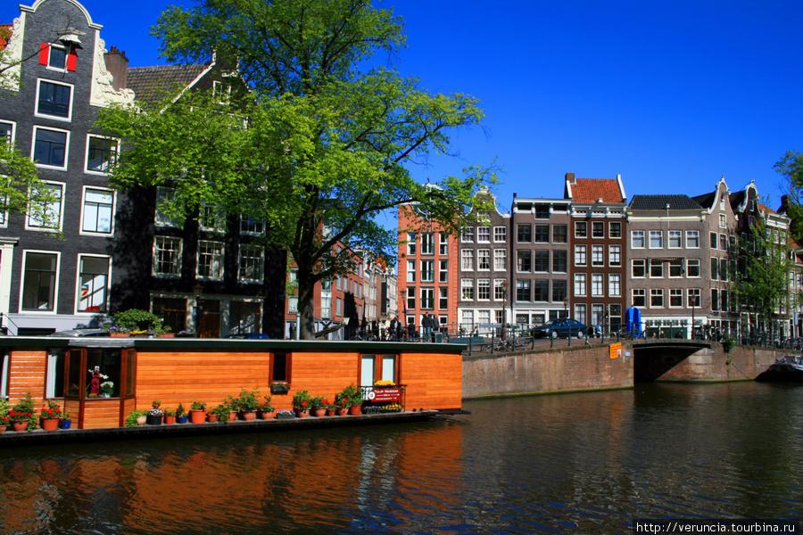 Настоящие амстердамцы люб