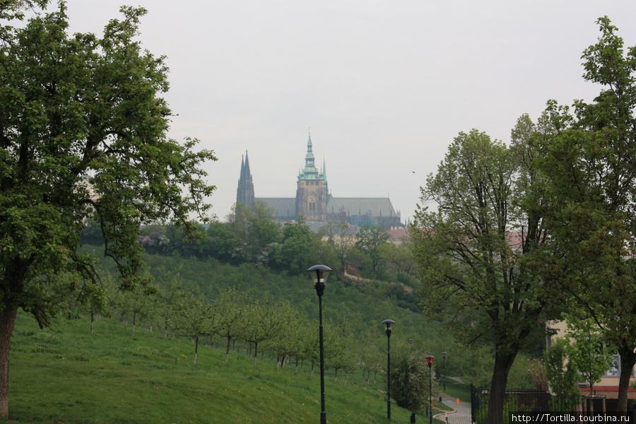 вид на Пражский град с Петршина