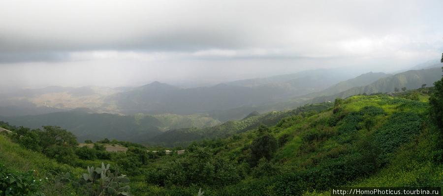 Тропический лес Филфил