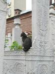 Вот такое бесплатное украшение одного  из надгробий на кладбище у Тюрбе султана Абдул-Хамида I.