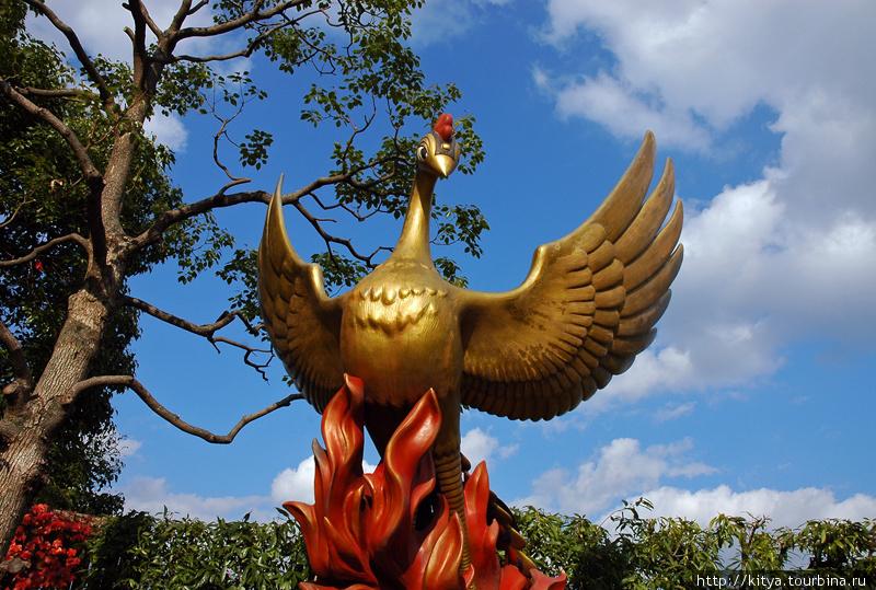 Жарптица — один из символов творчества Осаму Тэзуки
