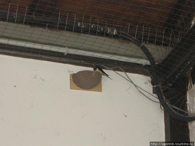 Ласточкино гнездо в Хершинге