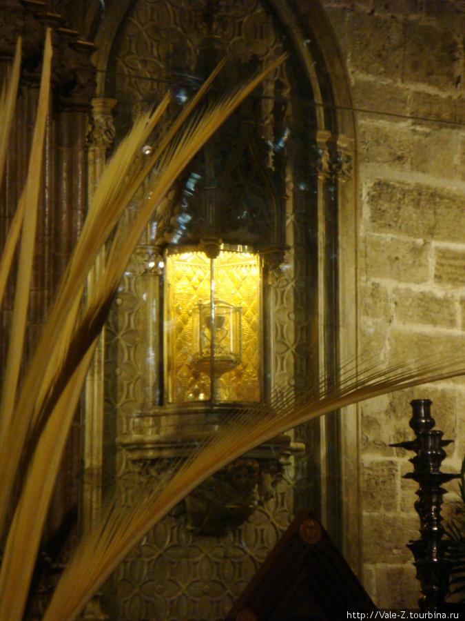 чаша Святого Грааля... сын сказал, раз он чашу увидел, теперь он — бессмертный :-)