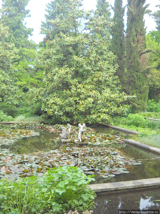 Вода играет большую роль в жизни Пальменгартена