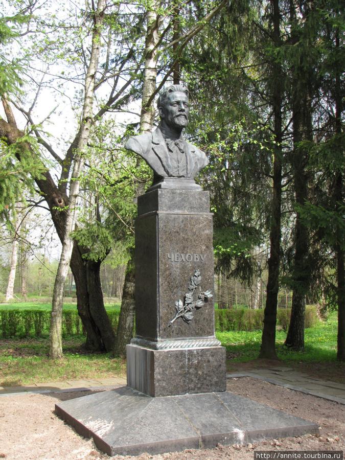 Памятник А.П.Чехову (скул