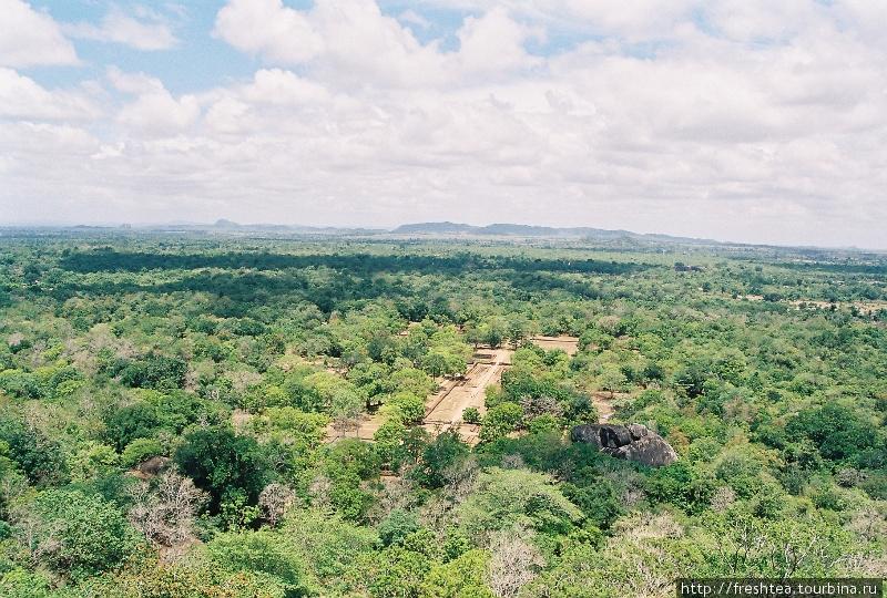Попробуй среди этих сухостойных джунглей представить себе уютный отель для современных гедонистов! Но в этом и есть интрига создателей туристической деревни с роскошными интерьерами.