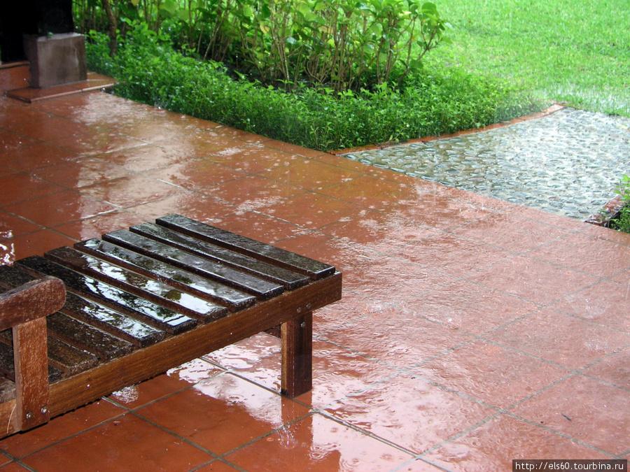 Дожди в это время года — явление не редкое