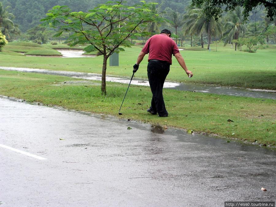 гольфистам не помеха..