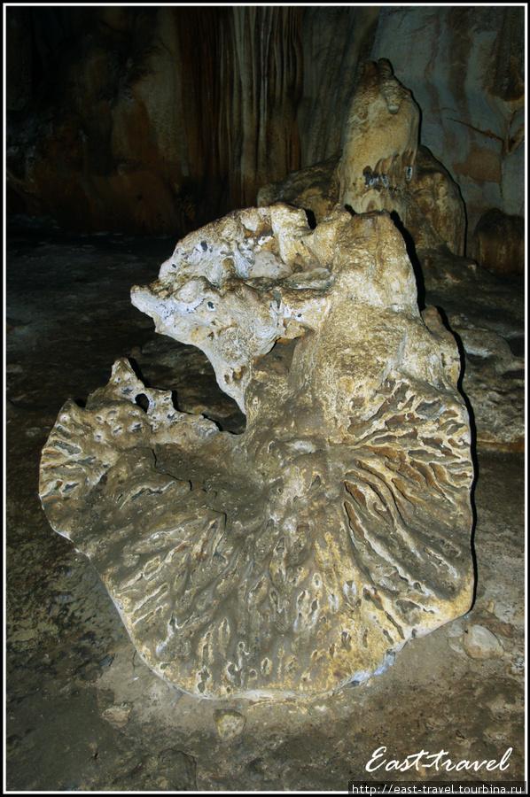 Подземный каменный гриб