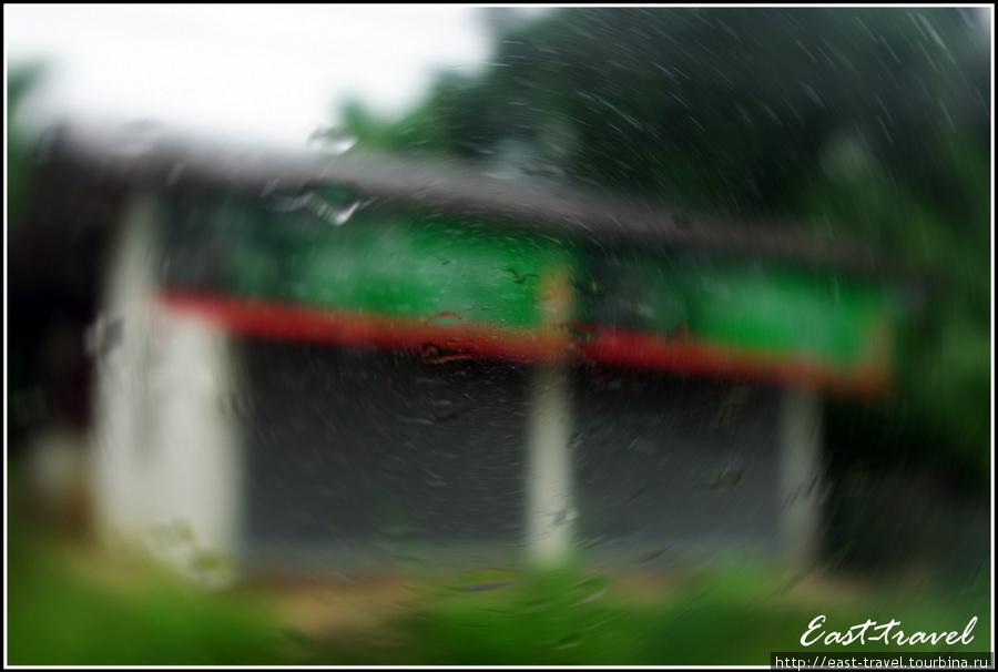 Конечно же, во время дороги за окном автобуса постоянно шумел дождь