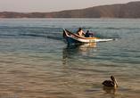 Все дело вот в таких рыбачьих лодках, возвращающихся домой с уловом.