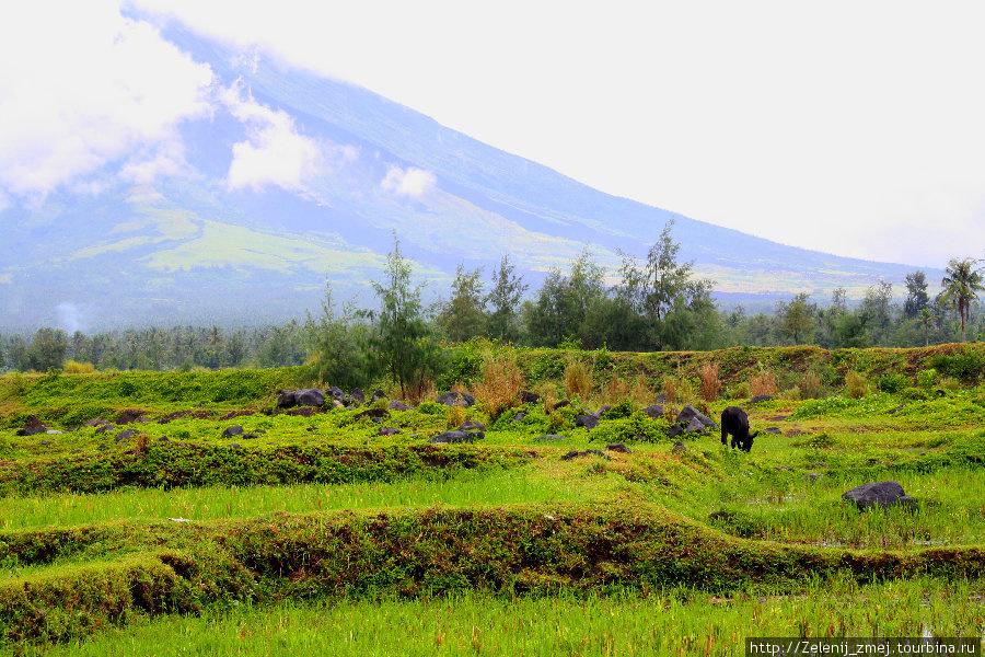 Вулкан Майон и развалины города Сагсава Легаспи, Филиппины