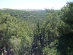 Вид на иудейские горы