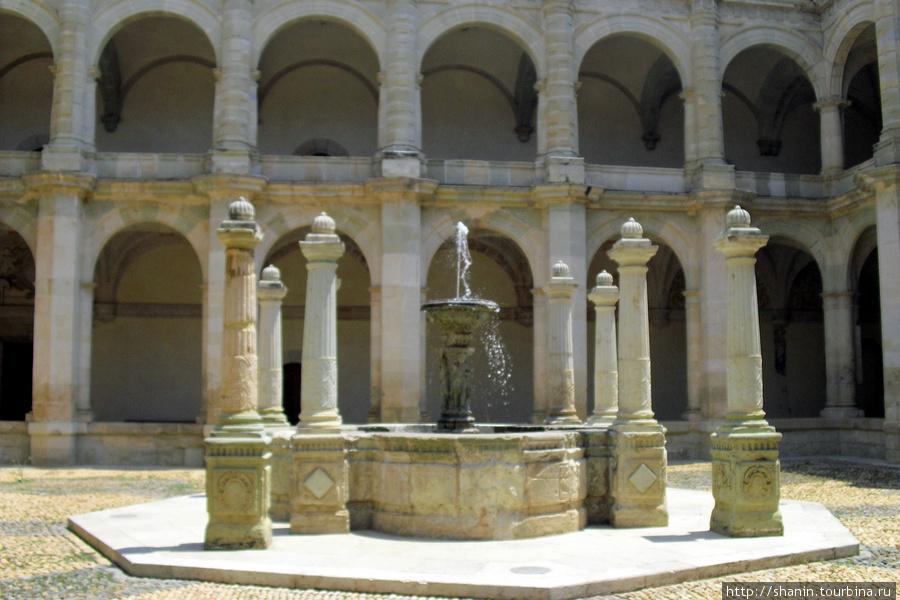Во внутреннем дворе монастыря Святого Доминика в Оахаке Оахака, Мексика