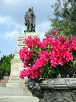 Цветы и памятник