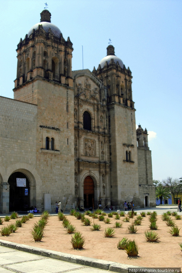 Доминиканский собор и кактусы Оахака, Мексика