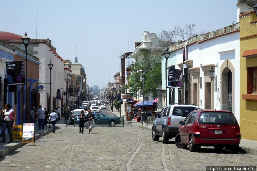 Площадь с кактусами Оахака, Мексика