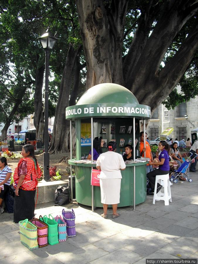 Киоск туристической информации перед кафедральным собором Оахаки Оахака, Мексика