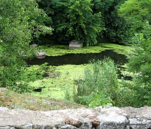 Парк формировался с использованием самой природы: реки и речных проток, нагромождений камней, тихих заводей, перекатов, гранитных скал, растущих деревьев и кустарников...